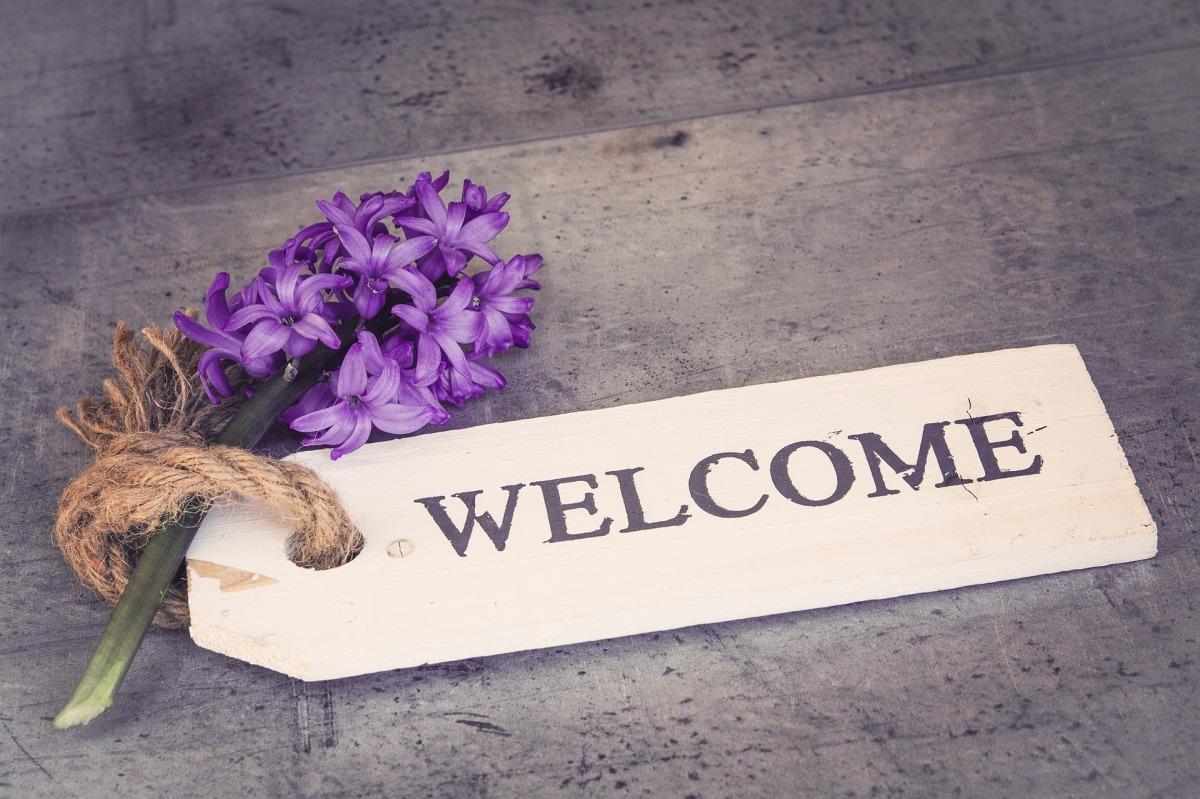 hyacinth-1398839_1920